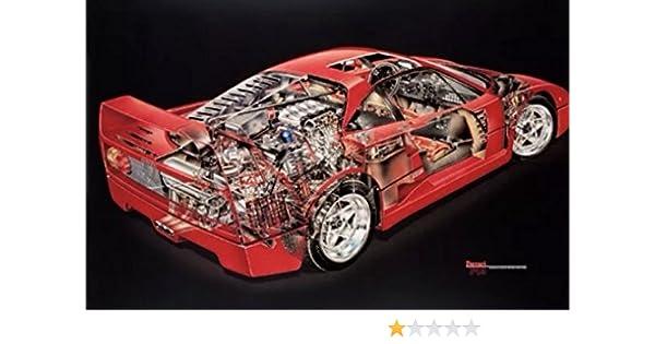 Amazon.com: Ferrari F40 Cutaway David Kimble Extremely Rare Car Poster: Posters & Prints