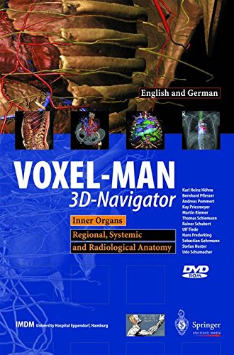 VOXEL-MAN 3D-Navigator: Inner Organs. Regional, Systemic And Radiological Anatomy / Innere Organe. Topographische, Systematische Und Radiologische Anatomie (English And German Edition)