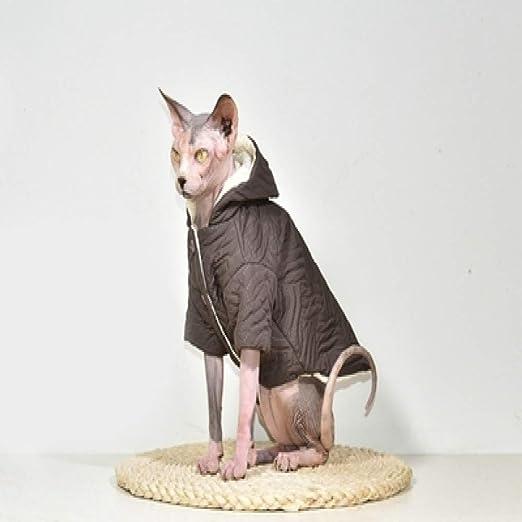 MYYXGS Ropa para Gatos Sin Pelo Sphinx, Ropa De Gato De AlgodóN CáLida para OtoñO E Invierno, Adecuada para Gatitos Grandes Y Gatos Sin Pelo Sphinx L: Amazon.es: Productos para mascotas
