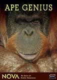 Ape Genius