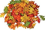 Assorted Mini Fall Color Oak Leaves - Autumn Weddings, Flowergirl Leaves, Fall Decor