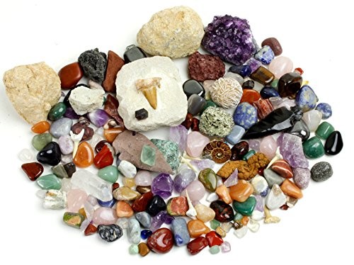 Rock, Mineral & Fossil Collection Activity Kit with ID Sheet & Rock book, plus Ammonite, Shark's Tooth in Matrix, Fossilized Poo, 2 Geodes & Arrowheads,(OVER 125 pcs and NO GRAVEL) Dancing Bear Brand (Mineral Rocks Real)