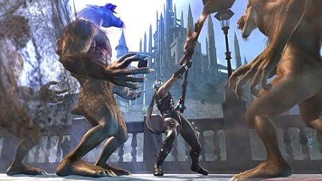 Ninja Gaiden 2 [Importación Japonesa]: Amazon.es: Videojuegos