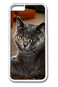 iPhone 6 Plus Cases (5.5 inch) - Catz Fine Cover For PC Clear
