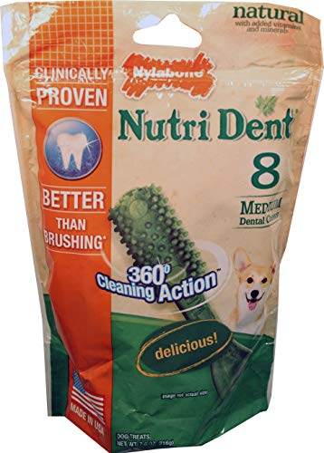 Billion Deals NUTRI DENT Brush - Medium/8 Pk