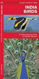 India Birds: A Folding Pocket Guide to Familiar Species (Wildlife and Nature Identification)
