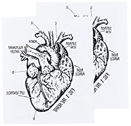 Tattly Temporary Tattoos, Heart Chart, 0.1 Ounce
