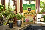 Miracle-Gro Cactus, Palm & Citrus Potting Mix and