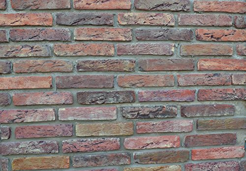 20-pcs-plastic-molds-antique-brick-veneer-for-concrete-plaster-wall-brick-w09