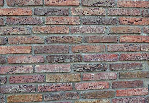 20-pcs-plastic-molds-antique-brick-veneer-for-concrete-plaster-wall-brick-w09