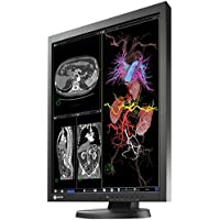 Eizo RadiForce MX215 21.3 LED LCD Monitor - 4:3 - 20 ms
