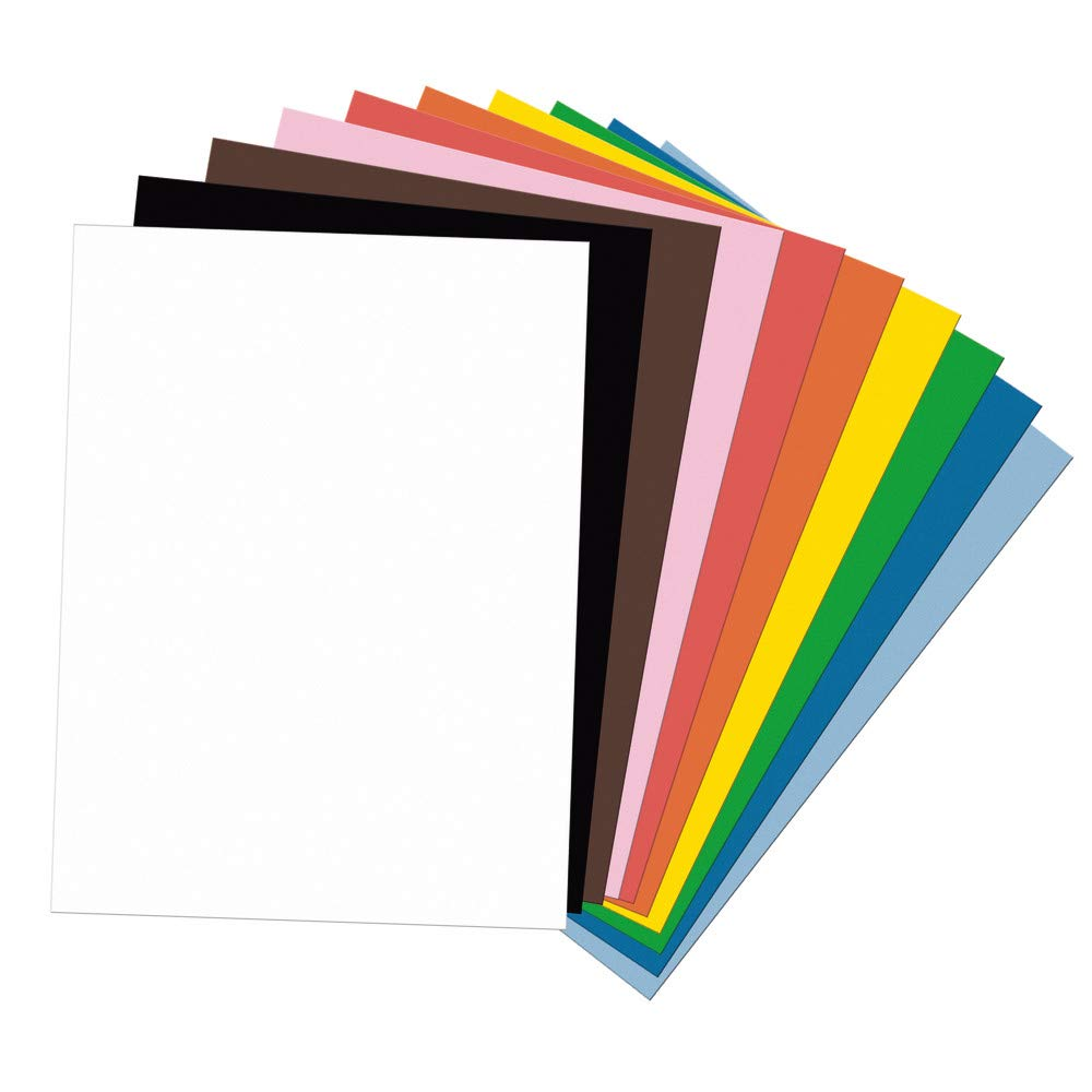 10 Assorted Colors 2,000 Sheets 9 x 12 /& 12 x 18 RIVERSIDE PAPER 104120 PAC104120 Tru-Ray Heavyweight Construction Paper Combo Case 9 x 12 /& 12 x 18