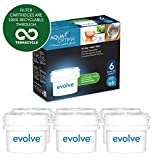 Aqua Optima Evolve 6 month pack, 6 x 30 day water filters - Fit BRITA* Maxtra* (not Maxtra+*) - EVS602