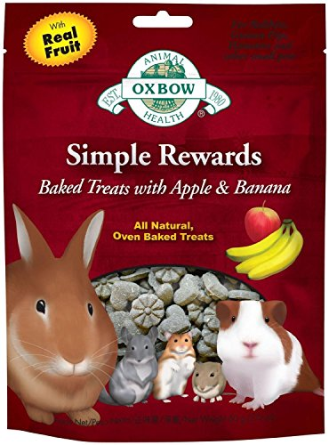 Oxbow Simple Rewards Baked Treats - Apple and Banana - 2 ounces