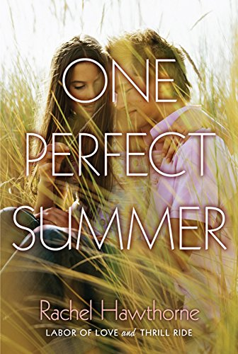 One Perfect Summer: Labor of Love and Thrill Ride pdf