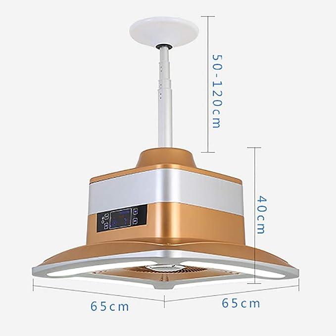 Ask Yue Lámpara de purificador de Aire, hogar además de lámpara de Techo de Humo de Segunda Mano de formaldehído Lámpara de purificación de Pantalla táctil con Control Remoto LED (Oro): Amazon.es: