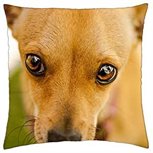 Dog - Throw Pillow Cover Case (18