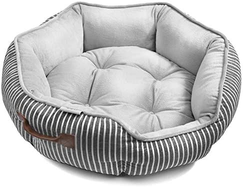 Amazon.com: NN Pet Nest - Caseta para gatos con forma de ...