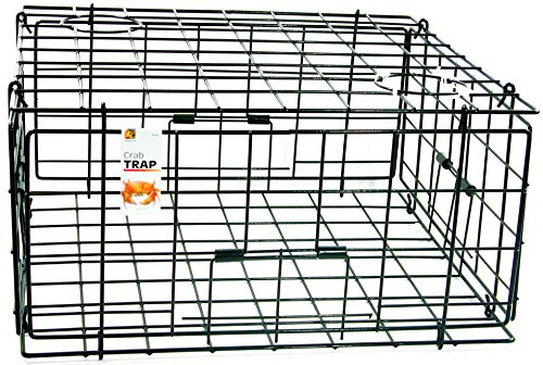 Best crab traps - Danielson Pacific FTC Crab Trap-24in x 24in x 13in
