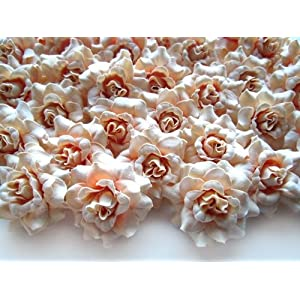 "(100) Silk Pearl Cream Roses Flower Head - 1.75"" - Artificial Flowers Heads Fabric Floral Supplies Wholesale Lot for Wedding Flowers Accessories Make Bridal Hair Clips Headbands Dress 1"