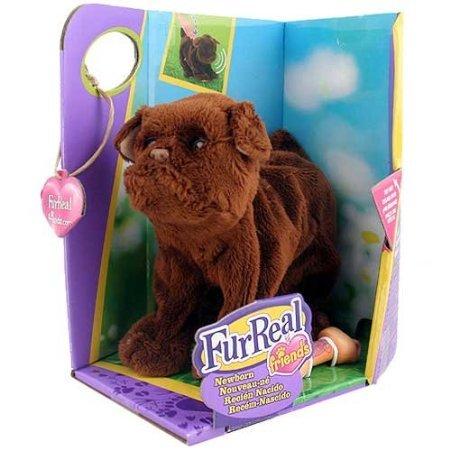 Newborn Chocolate Lab (FurReal Newborn Chocolate Lab Puppy)