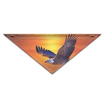 RGHUBTA - Bufanda de águila voladora para perros, gatos y mascotas, accesorio de vacaciones, collar, pañuelo: Amazon.es: Hogar