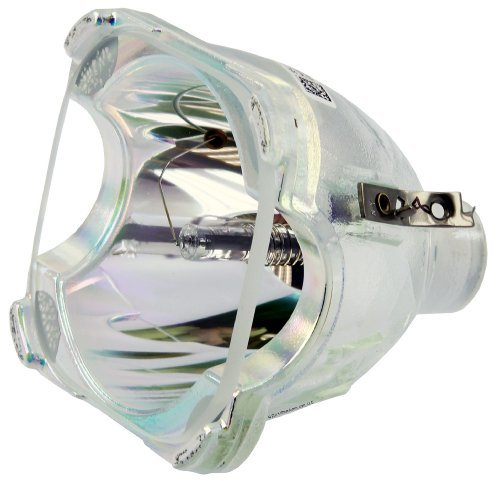 (Philips OEM PHI/334 Replacement DLP Bare Bulb (RP-E022-4))