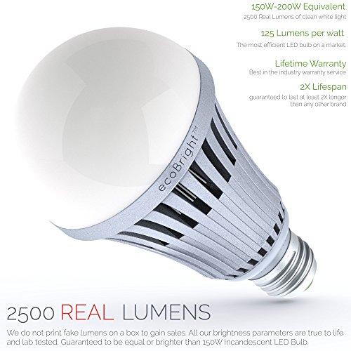 150 Led Light Bulb in Florida - 7