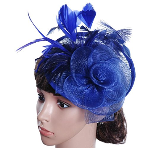 Wensltd Fashion Womens Feather Mesh Net Sinamay Fascinator Hat with Hair Clip Tea Party Derby (Blue) from WensLTD Jewelry