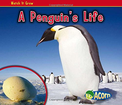 A Penguin's Life (Watch It Grow)