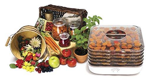 Ronco Food Dehydrator Canada