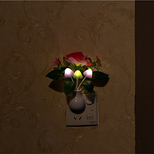 Decorative Lights - Red Peony Led Dimming Night Light 7 Colors Changing Light Control Home Wall Decor Gift - Ibis Orchid Night Lights Nite Lite Ceramic Light Decorative Peony Floral - And - 1PCs (Start Watercolour)