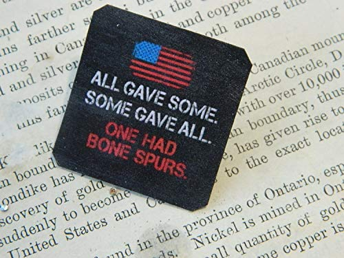 (Anti-Trump Lapel Pin All Gave Some. Some Gave All. One Had Bone Spurs.)