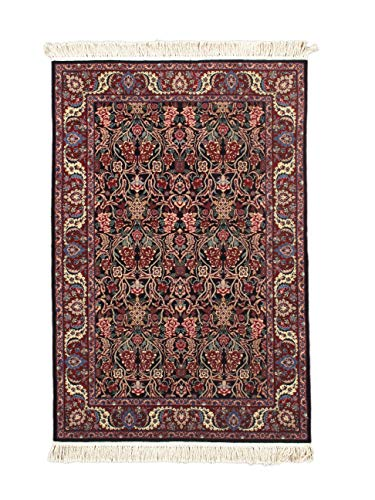 (NYC Rugs New, Black, 4' x 6' Sino Kerman Rug - Hand-Knotted Wool Area Rug)