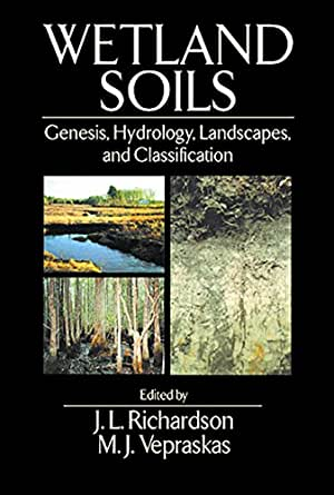 Wetland soils genesis hydrology landscapes for Soil genesis