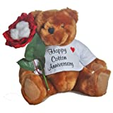 JustPaperRoses Happy 2nd Anniversary Teddy Bear with Cotton Rose Gift (we have years 1 to 20, 25 & 50)