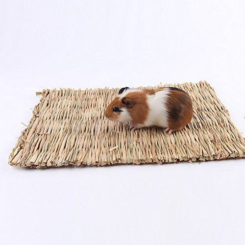 Ferret Edible Toy - UEETEK Hand Woven Natural Seagrass Mat Non-Toxic Chew Toy Bed for Hamsters Rabbits Parrot,15.4 x 10.6 x 0.4 inch (L x W x H)