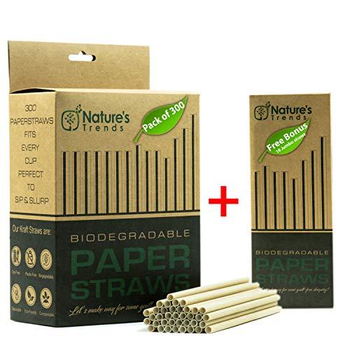 Biodegradable Paper Straws - Premium 300 Brown Kraft Dye-Free Drinking Straws for Juices Smoothies-Compostable Plastic-Free Bulk+16 Bonus Smoothie Straws-Eco-Friendly (7.75