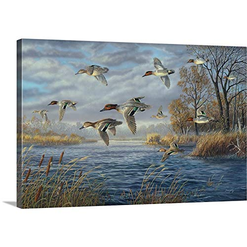 (Terry Doughty Solid-Faced Canvas Print Wall Art Print Entitled Sanctuary Bay - Green Winged Teal 36