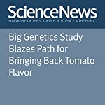 Big Genetics Study Blazes Path for Bringing Back Tomato Flavor | Susan Milius