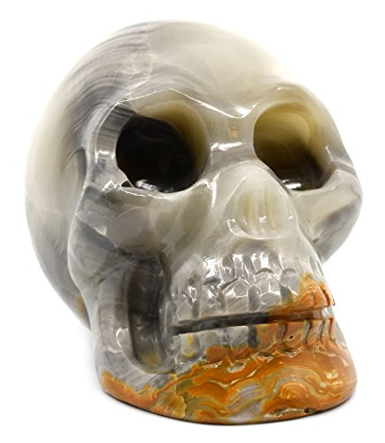 "Misty Gray Onyx Aragonite Skull Figure, 3"" Tall, 4"" Long, 2.5"" Wide (1.8lb), Carved from Real North American Gray Onyx Aragonite - The Artisan Mined Series by hBAR"