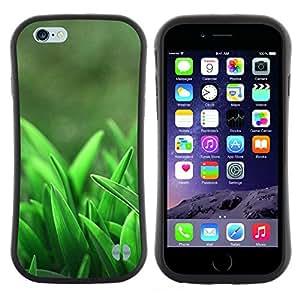 Pulsar iFace Series Tpu silicona Carcasa Funda Case para Apple (4.7 inches!!!) iPhone 6 Plus / 6S Plus ( 5.5 ) , Primavera Crescere Foresta Clean