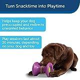 PetSafe Ultra-Thick Natural Rawhide Dog Treats for