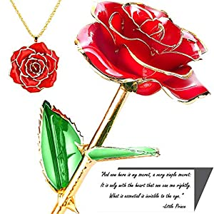Beauty and The Beast Enchanted Rose in a Glass Dome with Necklace and Love Letter - Real Rose 24K Gold Dipped 19
