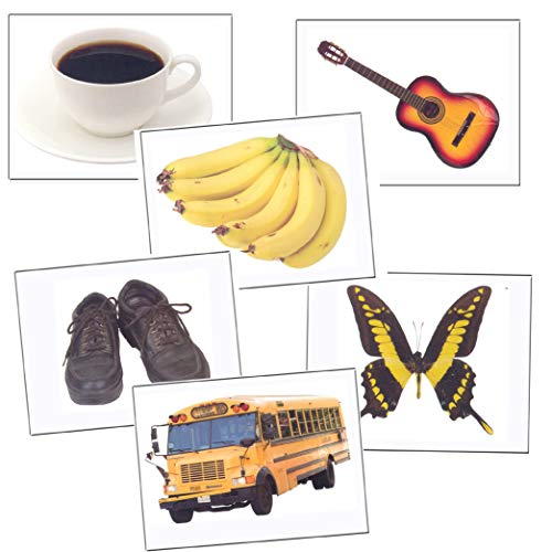Photo Funtastic Language Cards (385 Basic Vocabulary Picture Cards for Language Development)