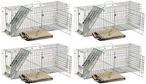 (Havahart 1099 Feral Stray Cat Rescue Kit (4 Kits))
