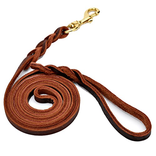 Pet Cowhide Dog Training Leash,Heavy Duty Braided Leather Slip Lead Leash for Dogs, 1 Inch Wide, 4Ft Long