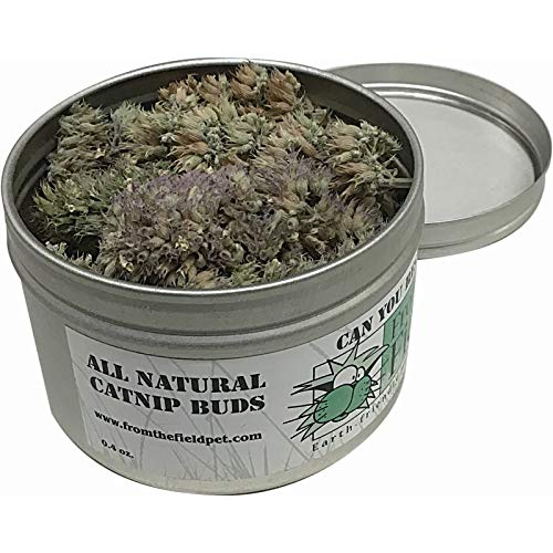 0.4 Ounce From The Field Can You Resist Catnip Buds, 0.4-Ounce