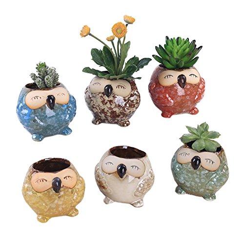 LANKER 6 Pack 3.1 Inch Mini Owl Pots Flowing Glaze Ceramic Succulent Planter Plant Container(3.1 inch 6pcs)