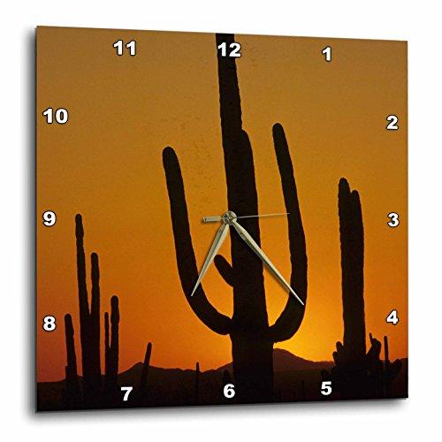 (3dRose DPP_87957_2 Giant Saguaro Cactus Succulent, Arizona-Us03 Jme0107-John and Lisa Merrill-Wall Clock, 13 by 13-Inch)